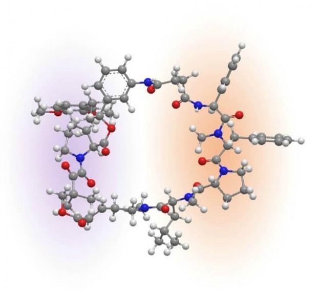 molecular_image crop